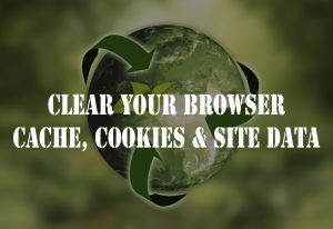 how-to-clear-browser-cache-site-data-cookies